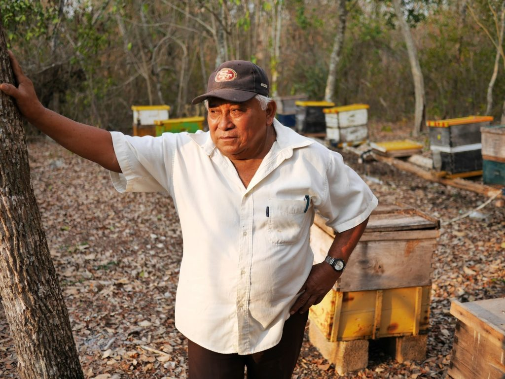 Feliciano Ucan framför sin biodling som minskat drastiskt de senaste åren. Foto: Lari Honkanen