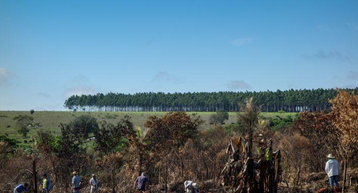 Jordockupation är, och har historiskt varit, ett vanligt sätt för småbrukare och jordlösa i Paraguay att få tillgång till mark att bruka. Foto: Maja Heide